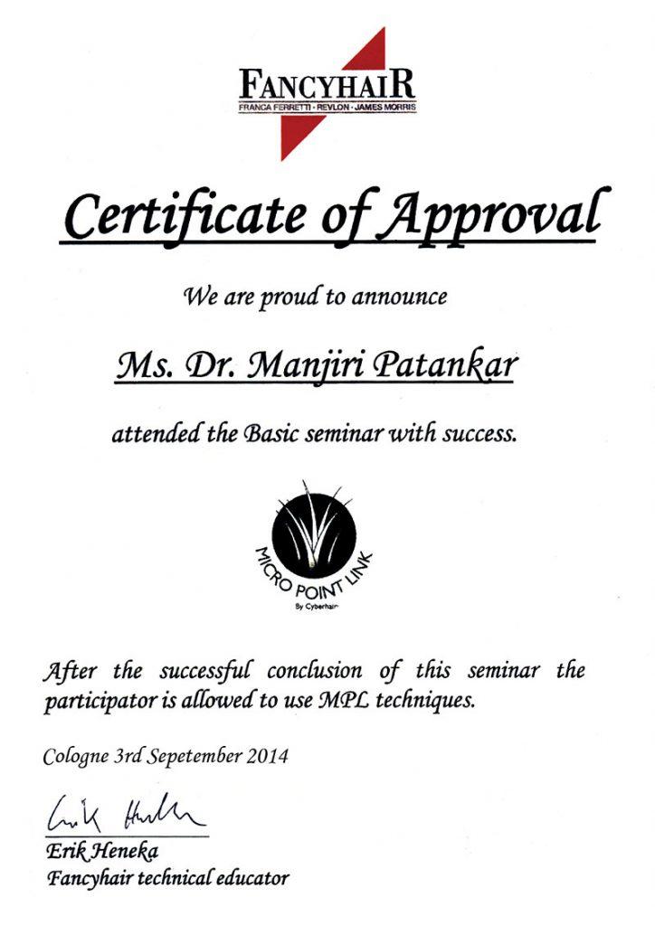 Certificate manjiri instasculpt